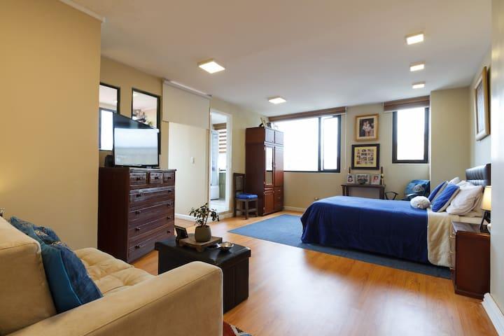 Suite privada con mucha luz natural. / Private studio apartment with natural lighting.