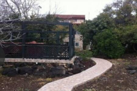 הכניסה היא רחבה ומוארת, אין מדרגות בנכס, הכניסה היא מהחנייה ישירות לשביל ארוך עד לכניסת הקרקע בדירה