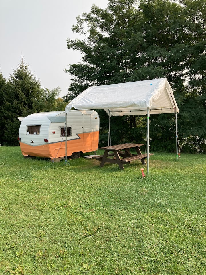 The Daisy Camper at the Heron