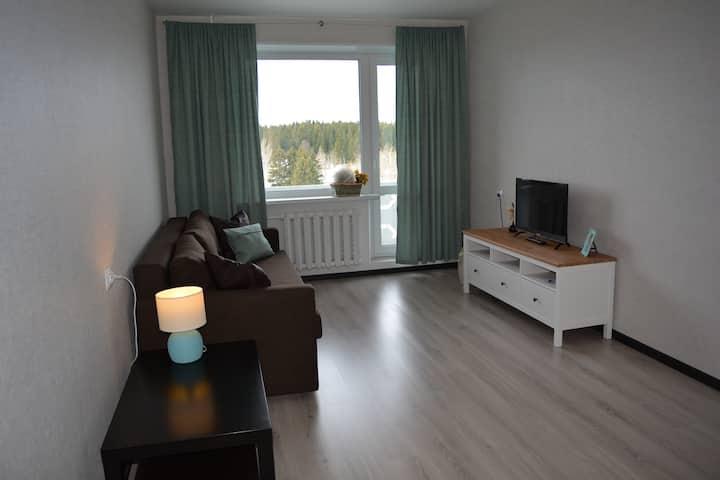 Аппартаменты с видом на озеро Кармаланьярви