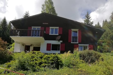 Apartment 5 minutes from the center of Morgins