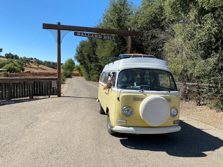 Ballard Hill Ranch Los Olivos Tent Campsite BYOT!