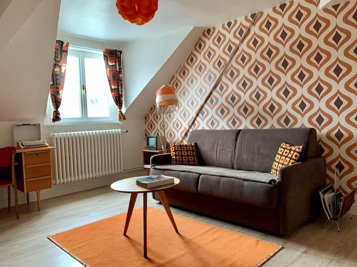 Appartement Vintage avec  vue sur le château