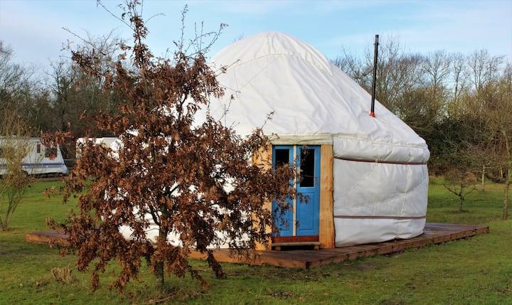 Den kirgisiske Yurt