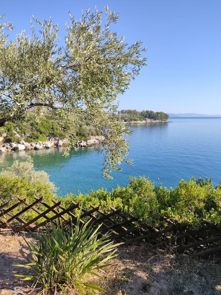 Private seaside villa in Pelion - Krypsana cove