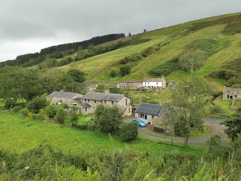 The Old Joinery, Garsdale - Cowslip Suite