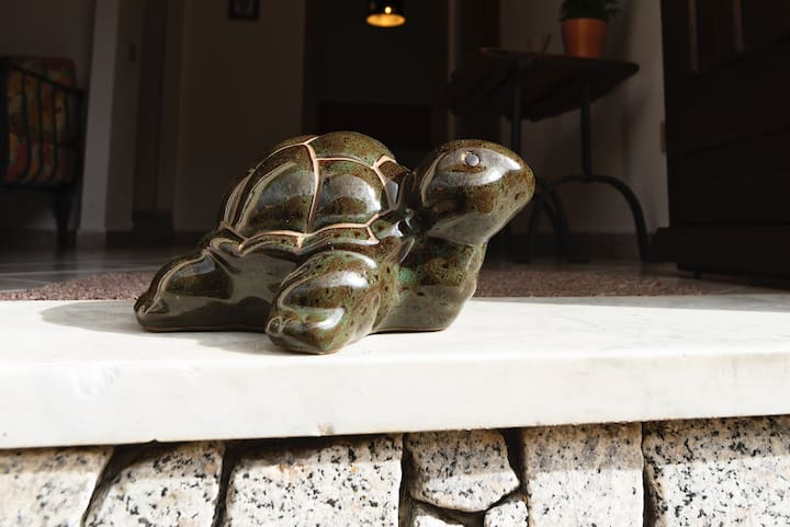 casa delle tartarughe