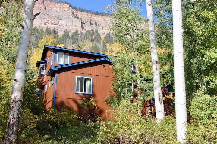 Spacious Durango Mountain Home and Incredible View
