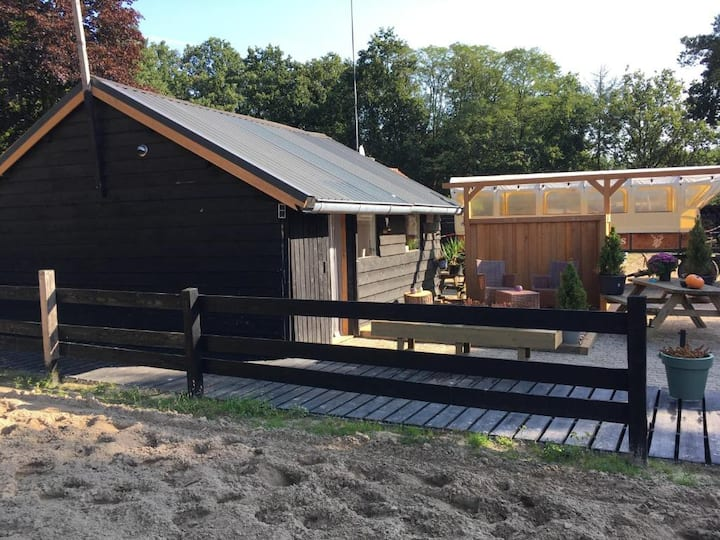 De Veluwse Heide studio
