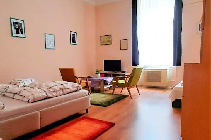 Győr city  center, studio apartment