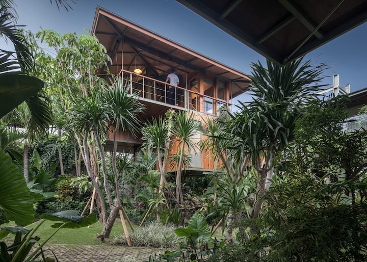 LAUNCH SPECIAL Architect's Treehouse in Canggu