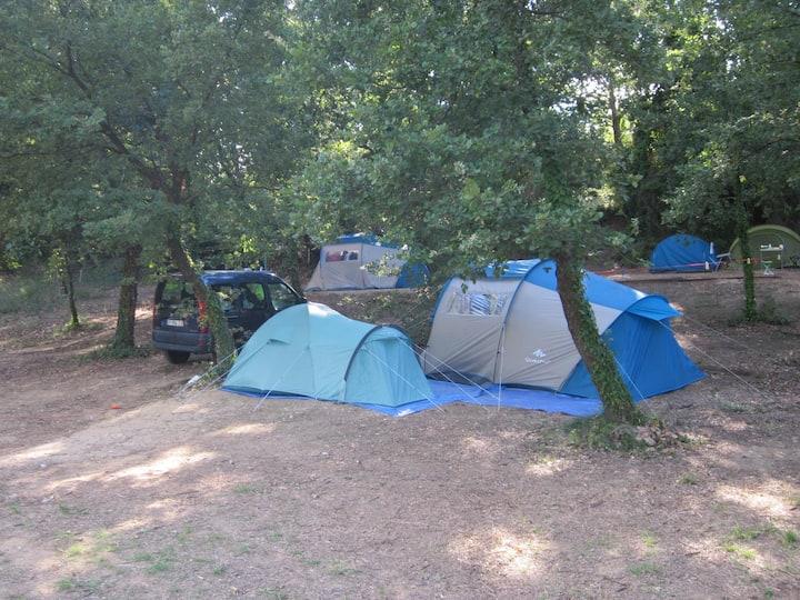 Place de camping dans un petit camping a la ferme