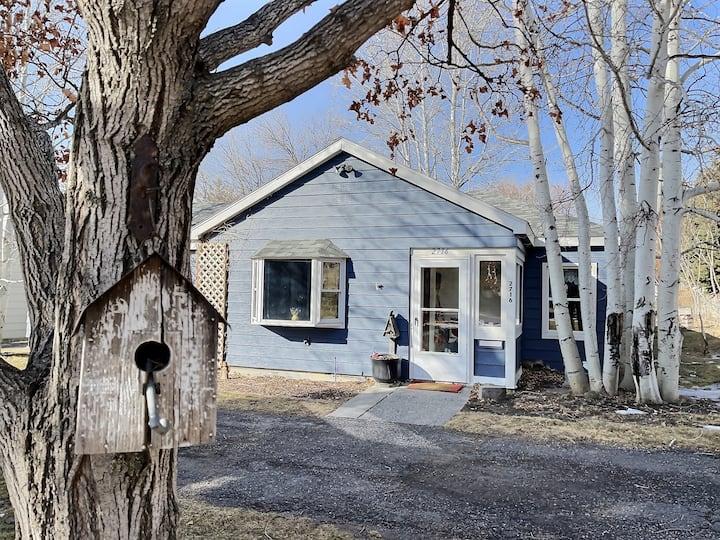 The Cozy Blue Cottage