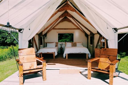 Succurro : Tent with a View - Order