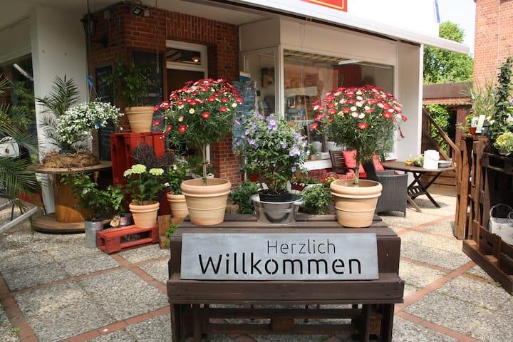 Urlaub bei Blume und Meer im Ostseebad Hohwacht!
