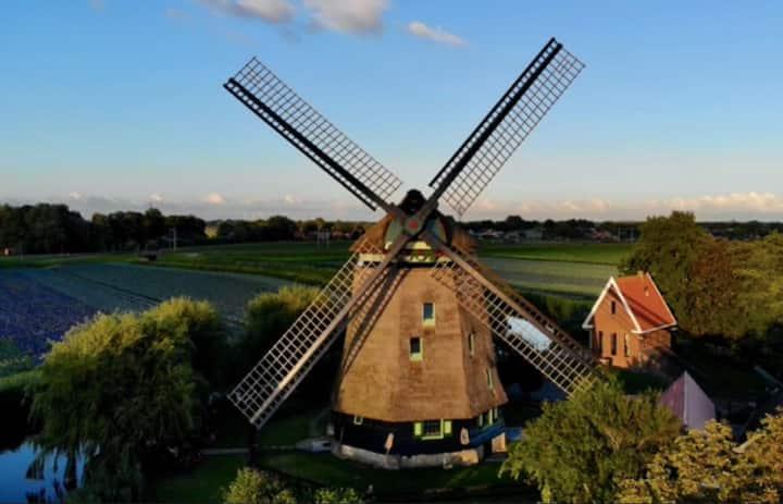 Windmolen uit 1590 - Noord Holland, Alkmaar