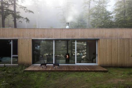 hinterhouse: a Scandinavian cabin near Tremblant