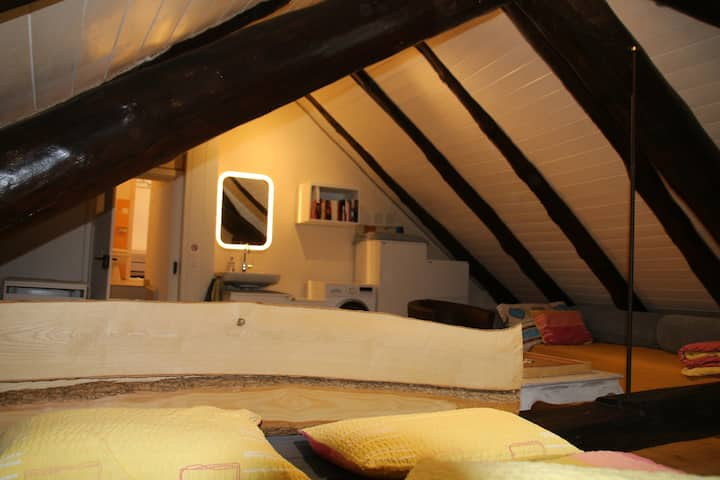 Swiss Alps - comfortable appartment