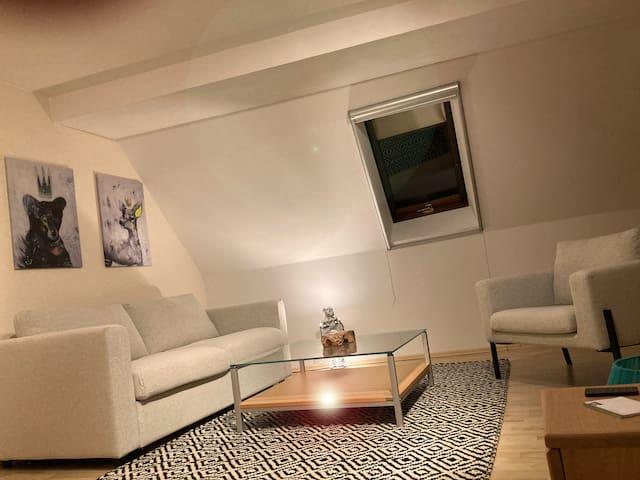 OG Sofaecke inkl. Bettsofa mit Matratze, Schlaf-/Wohnraum ist ein großer Raum