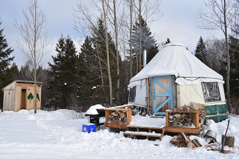 Winter Yurt Experience