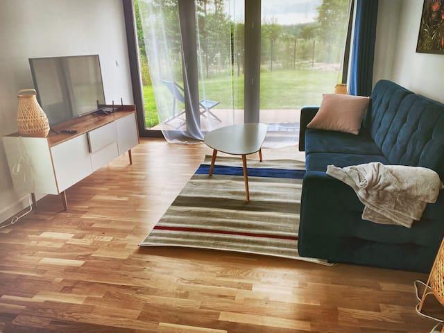 Lazy Deer - C5