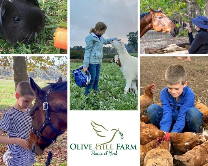 Entire Place - Olive Hill Farmstay Studio
