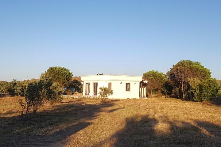 Bozcada Kırlangıç Aden Bağ Evi