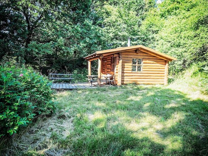 Bo i hytte med privat skov og kom tæt på naturen.