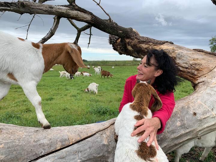 Du Bruyn Farmstay-Entire basement-Goats galore!