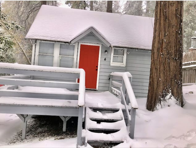 The Bear Cabins 4
