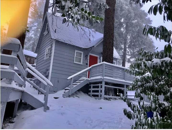 The Bear Cabins 5
