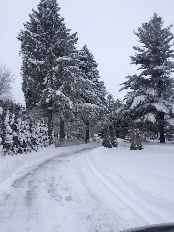 Winter Wonderland skidoo & ski trails, ice fishing