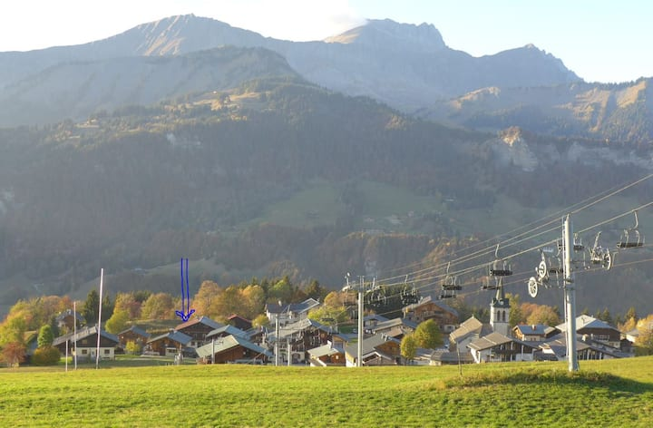 Crest-Voland (Savoie 1230m) Apt centre du village