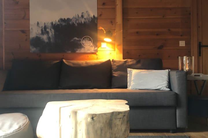 Die Couch für den gemütlichen Fernsehabend, bei Bedarf ein bequemer Schlafplatz für bis zu 2 Personen