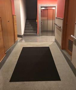 Iluminación del portal