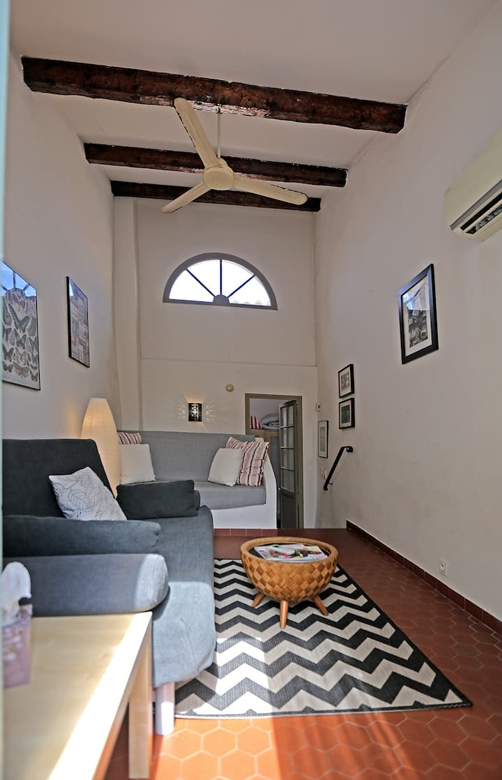 Lovely Antibes Village House with Terrace