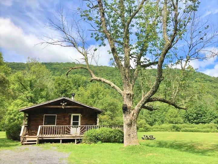 Catskill Cabins with Fireplace 2 br