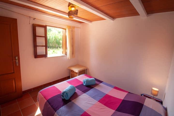 Valvida, Bear House