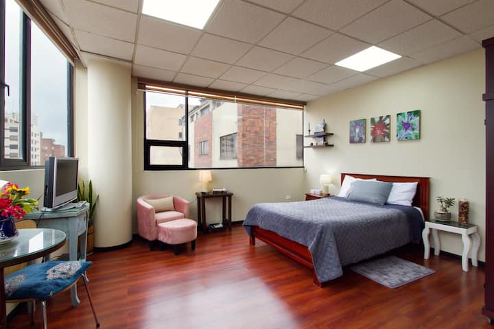 Long-Stay Studio Apt, Quiet & Charming  Wi-Fi 309