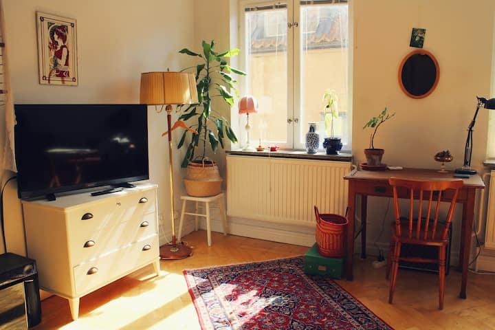 Stor vacker tvåa (60kvm) i Visby innerstad