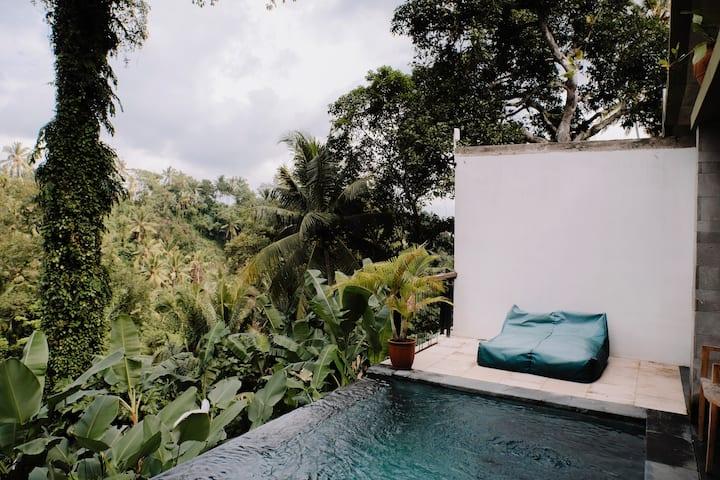 Ubud Romantic Private Pool Villa with view