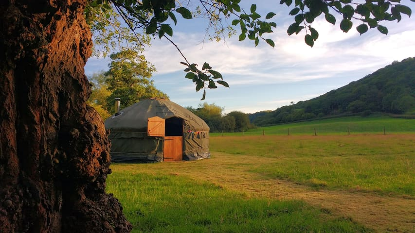 Upsticks Yurt Holiday North Wales