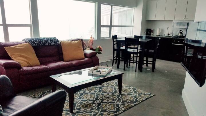 Luxurious Downtown Apt 202-Northern Lights Suite