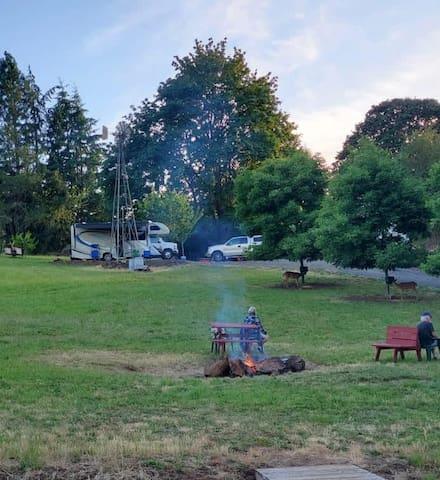 Christmas Tree Farm RV and Tent Camping