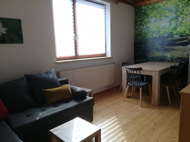 Aussschnitt. Wohnzimmer mit Küchenzeile, Essplatz, TV und gemütliche Schlafcouch (140x 200 cm Liegefläche)