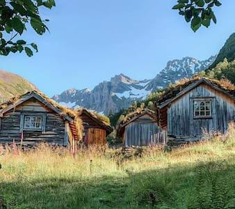 Sel på haukåssætra i Urkedalen