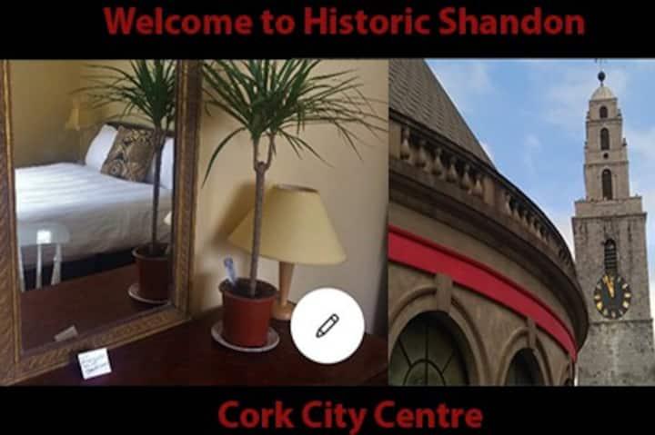 Unique spacious comfortable flat Cork City Centre