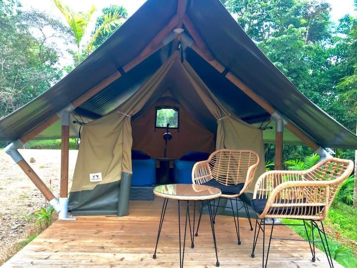 El Pulpo Safari Lodge / Paguro Lodge
