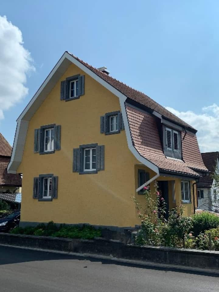 Spacious Modern Detached house, 22min to ZH Centre