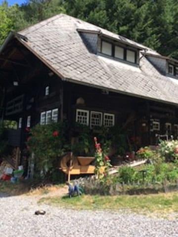 Schwarzwaldhaus in idyllischer Lage